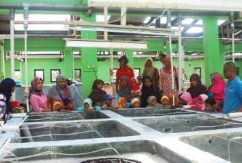 Kunjungan Studi DTA Daarul Ilmi Pangandaran